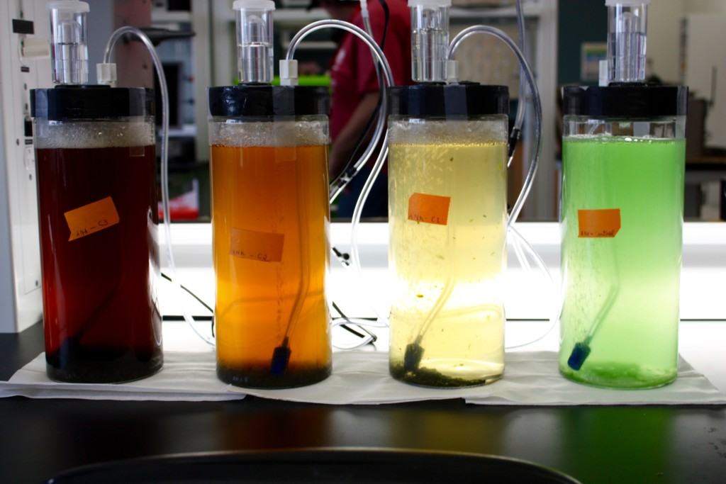 A set of solutions in a campus bioprocessing lab.
